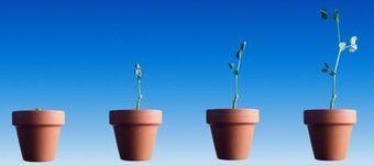 """Le """"lead nurturing"""" en trois questions   Marketing, Communication & PR   Scoop.it"""