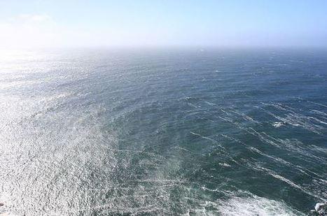 L'acidification des océans pourrait croître de 170 % d'ici 2100 | Toxique, soyons vigilant ! | Scoop.it