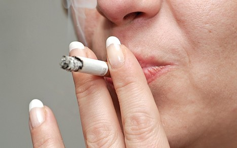 Tasmania considers cigarette ban for anyone born after 2000  - Telegraph | Economics | Scoop.it