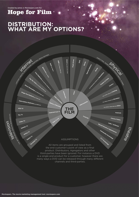 All your distribution options in one graphic | Screen Right (Screenwrite) | Scoop.it