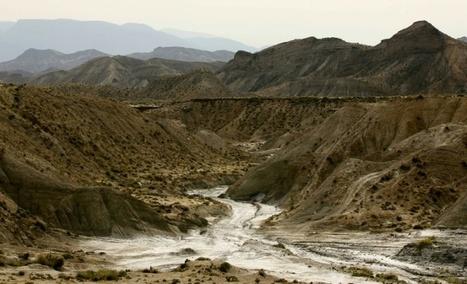 Réchauffement: les écosystèmes méditerranéens menacés d'un bouleversement inédit en 10.000 ans | Réhabilitation de décharges et friches industrielles - Environnement et Ecologie | Scoop.it