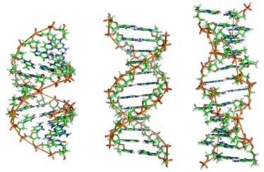 Microsoft lança ferramenta de encriptação para dados bioinformáticos   Bioinformática   Scoop.it