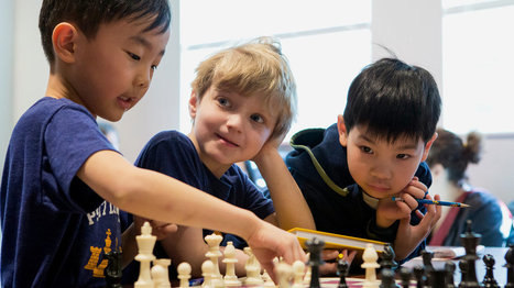 The Littlest Chess Champions | Co-creation in health | Scoop.it