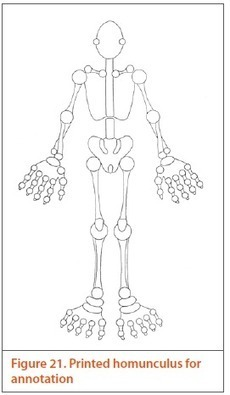 The musculoskeletal examination: REMS | Arthritis Research UK | New Group 4 | Scoop.it