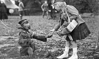 Top 10 animal war heroes - The Guardian | Animals R Us | Scoop.it