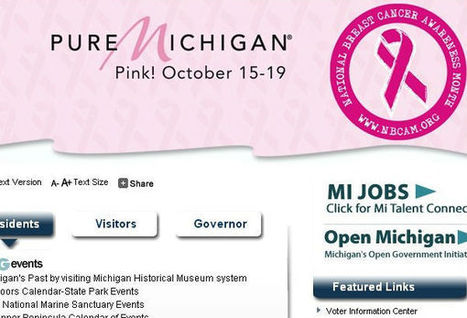 State Websites, Social Media Sites 'Go Pink' to Recognize Breast Cancer | Diva Designer Web | Scoop.it