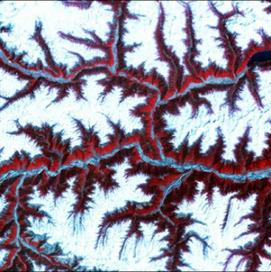 homunculus: A feeling for flow | Sediment transport mechanics | Scoop.it