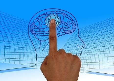 Vers la fin des mythes sur le fonctionnement du cerveau en éducation | EFL-ESL, ELT, Education | Language - Learning - Teaching - Educating | Scoop.it