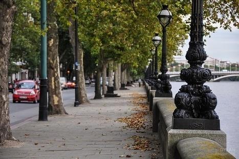 Londoners Living Near Street Trees Get Prescribed Fewer Antidepressants | Gardening | Scoop.it
