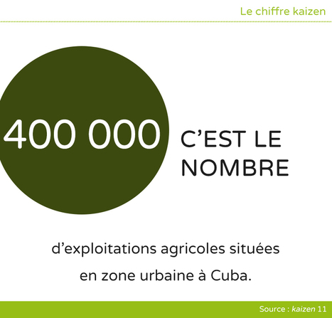 Le boom de l'agriculture urbaine à Cuba | Questions de développement ... | Scoop.it