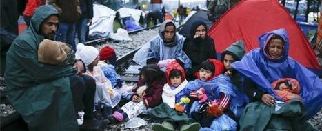 Turchia, bimbi siriani rifugiati al lavoro per le griffe della moda: H&M e Next - Il Fatto Quotidiano | Ethical Fashion | Scoop.it