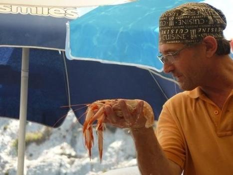 Archive: Summer popup on the beach :: Rew Rew review :: MaltaToday | Gozo Life | Scoop.it