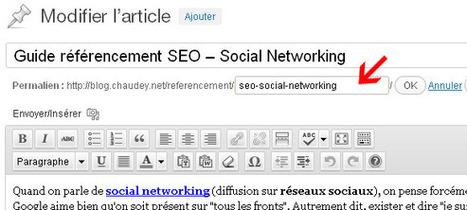 [WordPress] Bien configurer WordPress pour le référencement   Communication - Marketing - Web_Mode Pause   Scoop.it