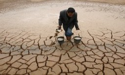 World Bank Report: 'A Disastrously Warming Planet Threatens To… Roll Back Decades Of Development'   Sustain Our Earth   Scoop.it