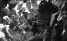 Ciné-club : L'enfant sauvage de François Truffaut   CLG au cinéma 2016-2017 : 6ème-5ème   Scoop.it