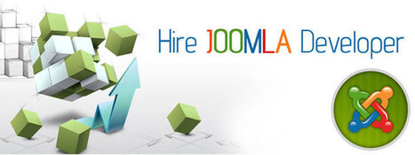 Choose the Right Joomla Developer in India for Your Business Website | Joomla Web Services | Scoop.it