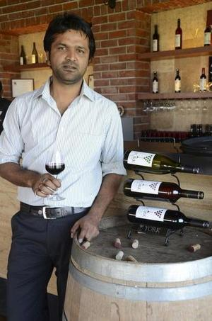 Young grapes of Nasik | Vitabella Wine Daily Gossip | Scoop.it
