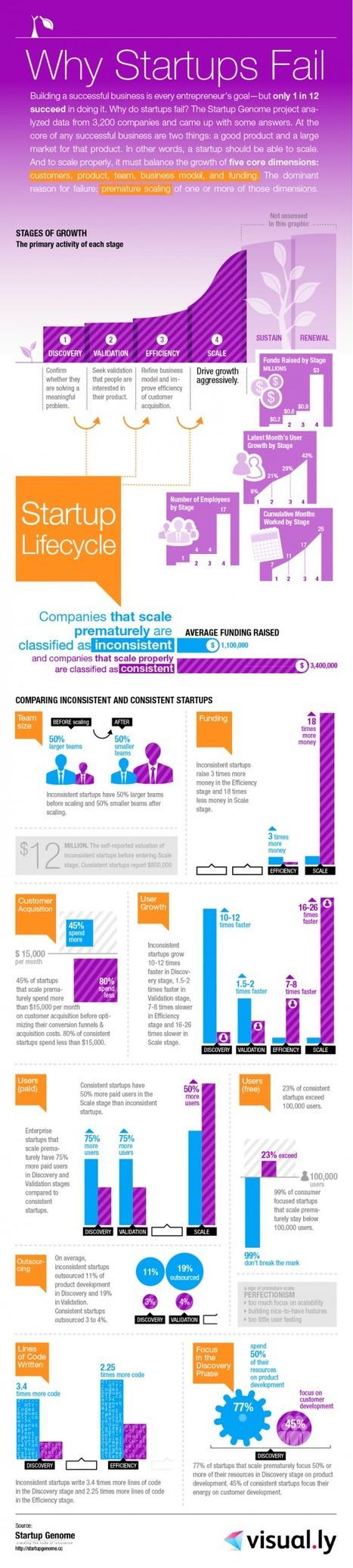 Pourquoi les startups échouent-elles ? | E-commerce + eCRM + video game + social = game-commerce | Scoop.it