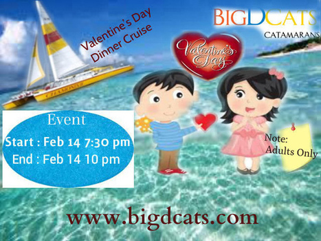 Valentine's Day Dinner Cruise In Bigdcats | Catamaran Services | Scoop.it