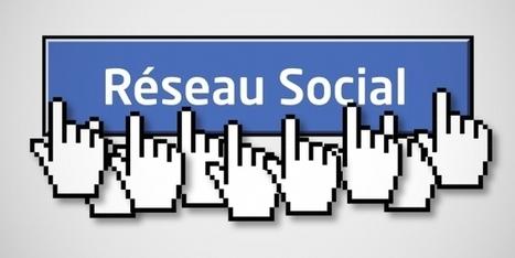 3 astuces pour cartonner sur les réseaux sociaux Facebook et Twitter | EFFICACITE COMMERCIALE | Scoop.it