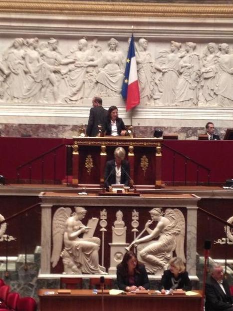 Twitter / EvaSasAN: @vmassonneau sur le pjl Retraites ... | Chatellerault, secouez-moi, secouez-moi! | Scoop.it