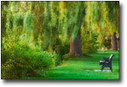 Creative Nature Photography - Orton Imagery | Impressionist camera | Scoop.it