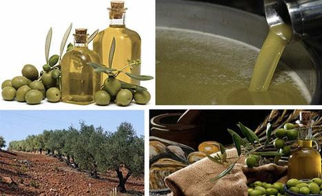 Régime méditerranéen : aussi contre le cancer d... | Condiments et sauces | Scoop.it