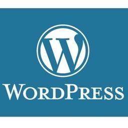 Un nuevo fallo de seguridad en Wordpress pone en alerta a millones de usuarios   Disseny   Scoop.it