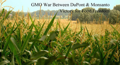 Dark History of #DuPont #pharma #pesticides #GMO #poison #socialmedia #UP #avaaz | Messenger for mother Earth | Scoop.it