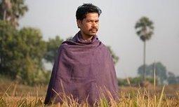 India's rice revolution | Food Culture Community | Scoop.it