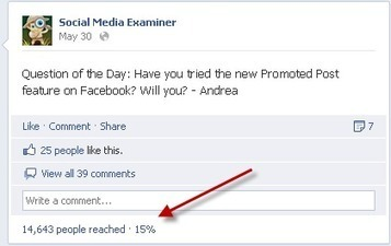 12 Tips When Using Facebook Promoted Posts | The Perfect Storm Team | Scoop.it