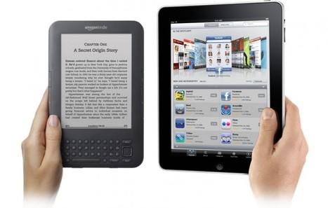 1/3 Nederlanders leest e-book   BlokBoek e-zine   Scoop.it