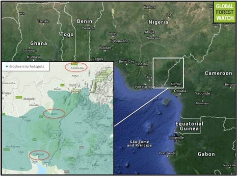 Superhighway construction surges forward in Nigeria | Ecosystems at Risk | Scoop.it