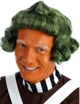 Green Oompa-Loompa Wig Fancy Dress Accessory | Fancy Dress Ideas | Scoop.it