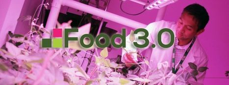 A hosting nightmare: 9 billion coming for dinner | Vertical Farm - Food Factory | Scoop.it