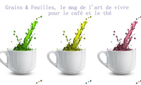 Grains et Feuilles   NEWS from the TEA WORLD - NELLES DU MONDE DU THE   Scoop.it