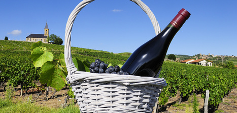 Coffrets cadeaux oenotourisme en France   Tourisme viticole en France   Scoop.it