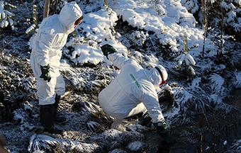 Talvivaaran ympäristökatastrofi - ei koskaan uudelleen!   Vihreät - De Gröna   Kaivostoiminta   Scoop.it