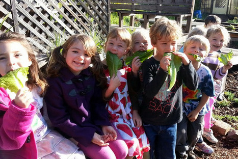 A growing network of school gardens | Farm to School Month | Wellington Aquaponics | Scoop.it