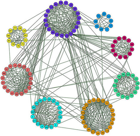 Detecting Communities Based on Network Topology | Darwinian Ascension | Scoop.it
