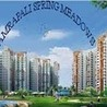 Amrapali Spring Meadows Noida Extension