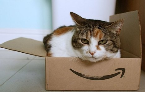 Amazon's 2014 Holiday Sees Mobile Shopping Approach 60% Of TotalVolume | MarketingHits | Scoop.it