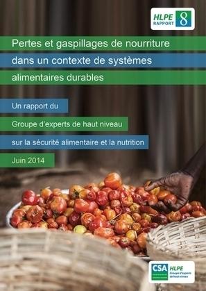 Pertes et gaspillages de nourriture dans un contexte de systèmes alimentaires durables - FAO | Emballage sous Atmosphere Modifiée | Scoop.it