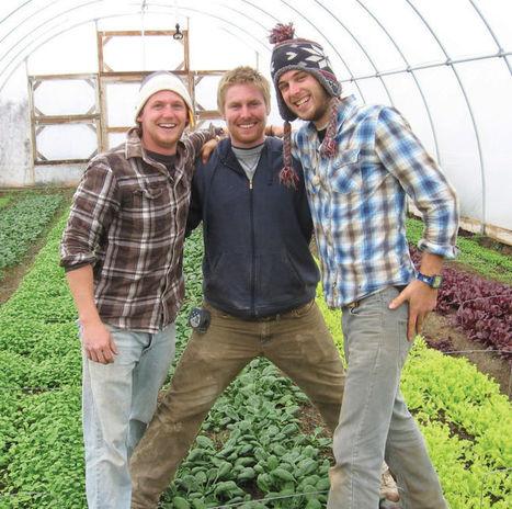 Farm keeps it local and organic - hngnews.com | Farming | Scoop.it