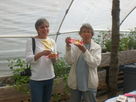 An Aquaponics Greenhouse Makes a Splash for Homesteading Education Month - Mother Earth News | Aquaponics World View | Scoop.it