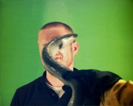 Eel slap! | I <3 Laughing | Scoop.it