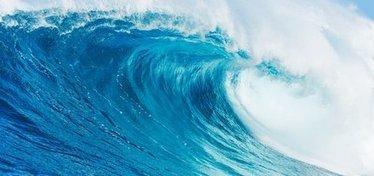 Wave Life Sciences touts more effective Duchenne drug | Duchenne Nation Research News | Scoop.it