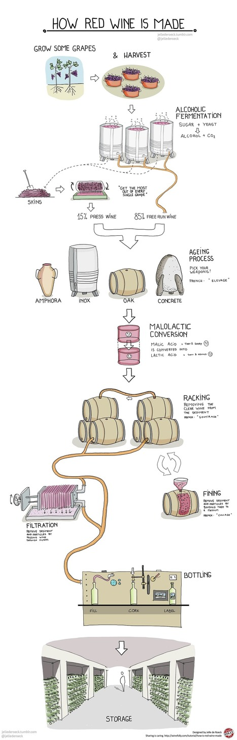 How is Red Wine Made? | Wine Folly | GMOs & FOOD, WATER & SOIL MATTERS | Scoop.it