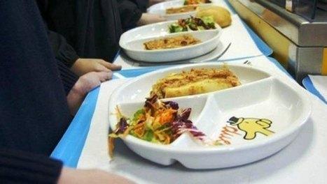 Celiachia: per una giornata in tutte le mense scolastiche di Milano sono stati serviti pasti senza glutine | FreeGlutenPoint | Scoop.it