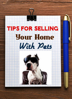 How to Sell A Home When You Have Pets | Real Estate | Scoop.it